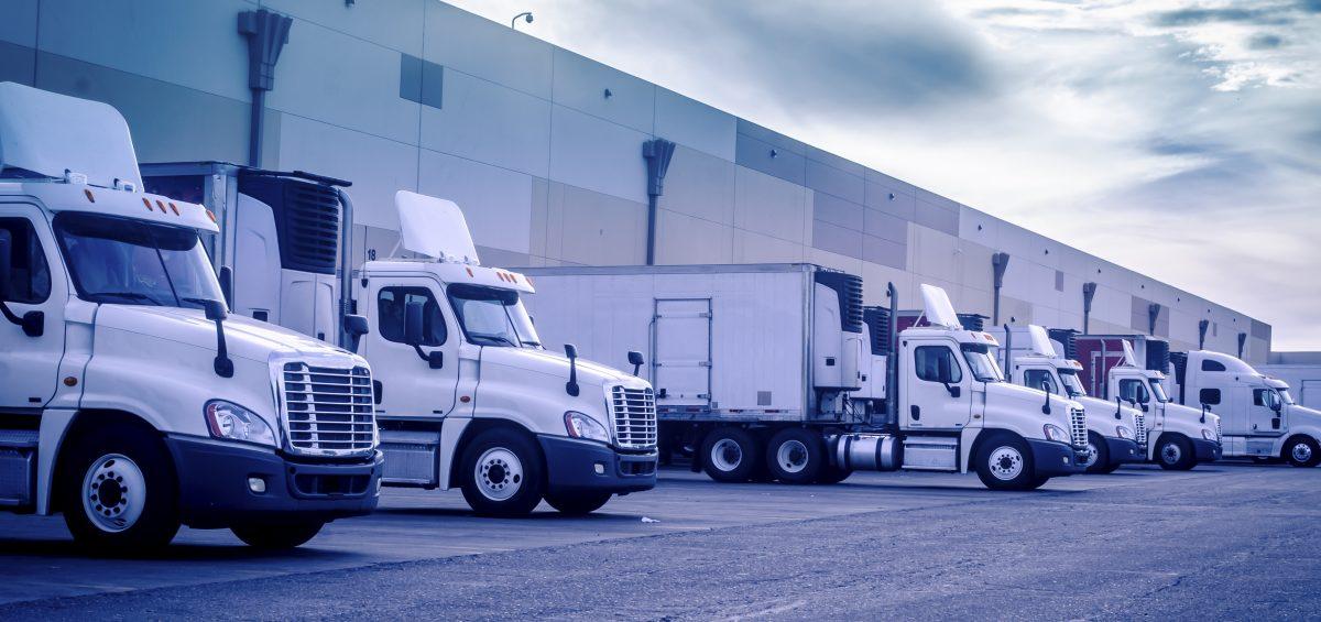 flota camiones servicios 3pl
