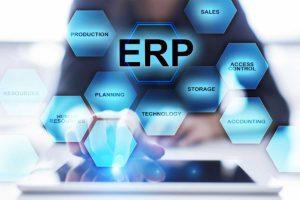 elementos software ERP