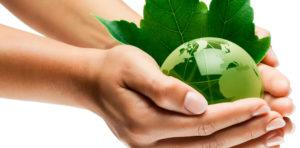 enfoque en medio ambiente